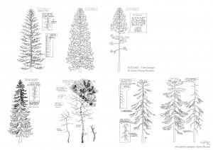 tree design-Guillaume laigle